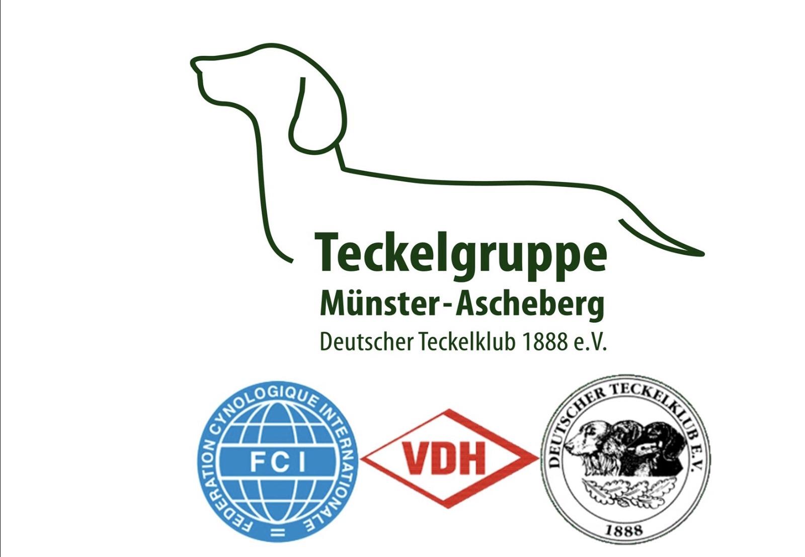 Teckelgruppe Münster-Ascheberg